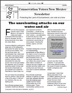 2013JulyNewsletter