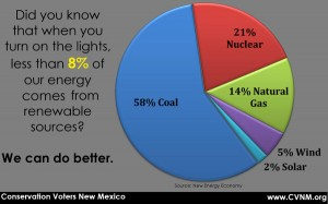 Only 8% of our energy comes from renewable sources?